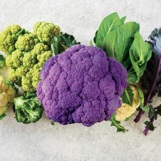Cavolo, broccoli e cavolfiore
